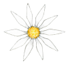 Redwing Road Books Logo